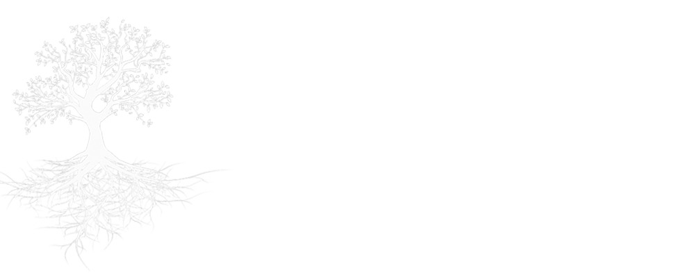 Barbara Woods Barnes, Florida Diplomate Jungian Analyst